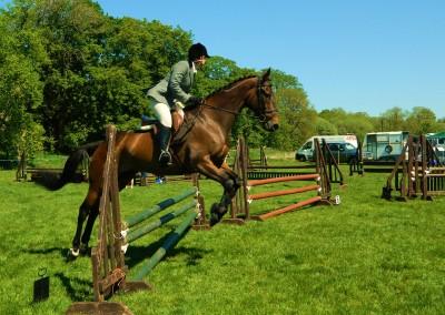 horse_jumping