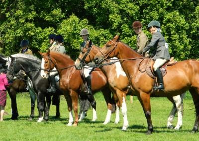 horse_rider